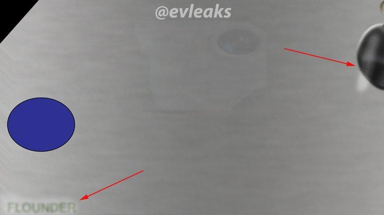 Nexus-lek-Volantis